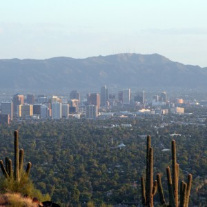 A city skyline with cacti in the foreground